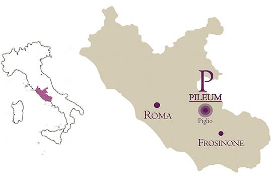 Come raggiungere Pileum