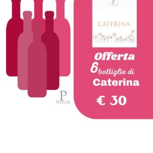 Offerta 6 bottiglie vino Caterina, Pileum