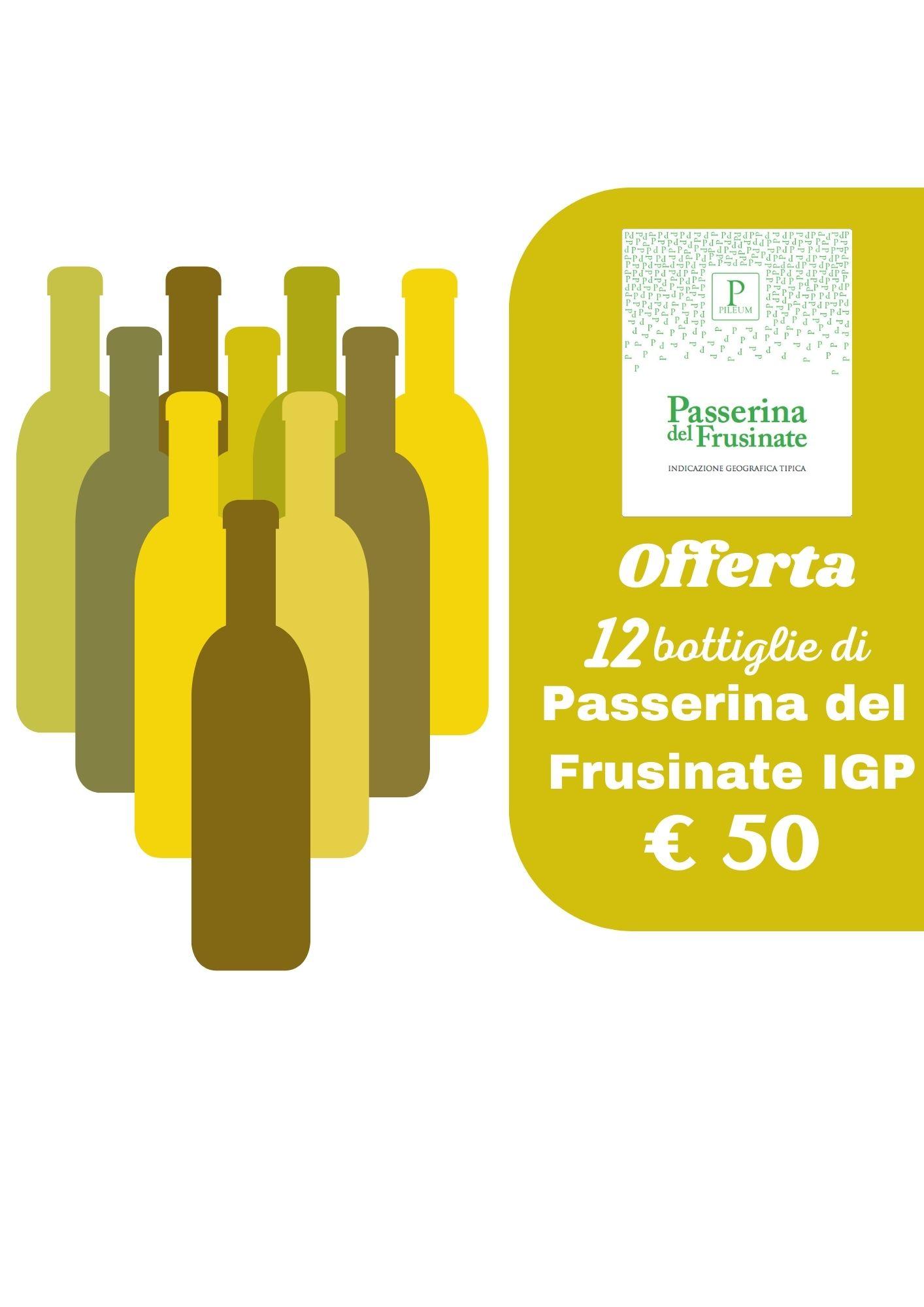 Offerta N.12 bottiglie Passerina del Frusinate Pileum