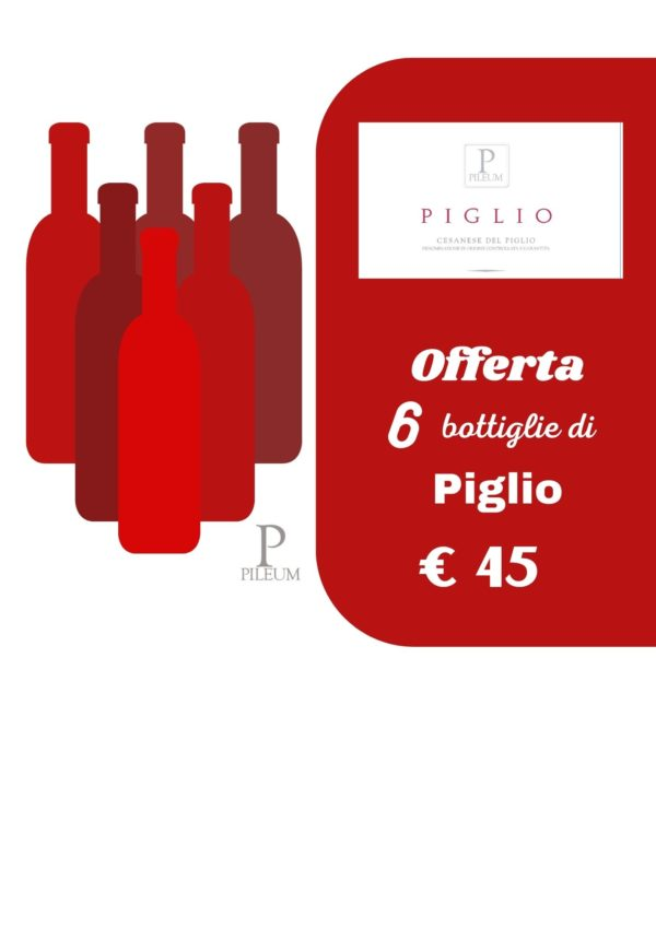 Offerta n.6 bottiglie PIGLIO, Cesanese del Piglio Classico DOCG 2018
