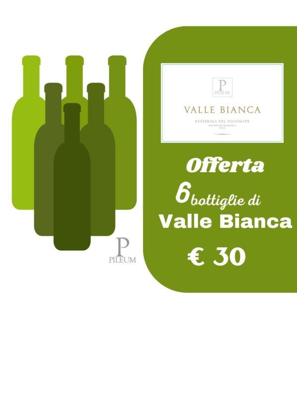 Offerta vini Valle Bianca PIleum