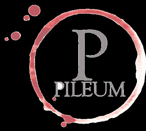 Promozioni Pileum